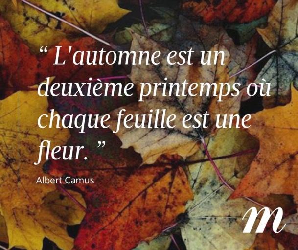 A Camus.jpg